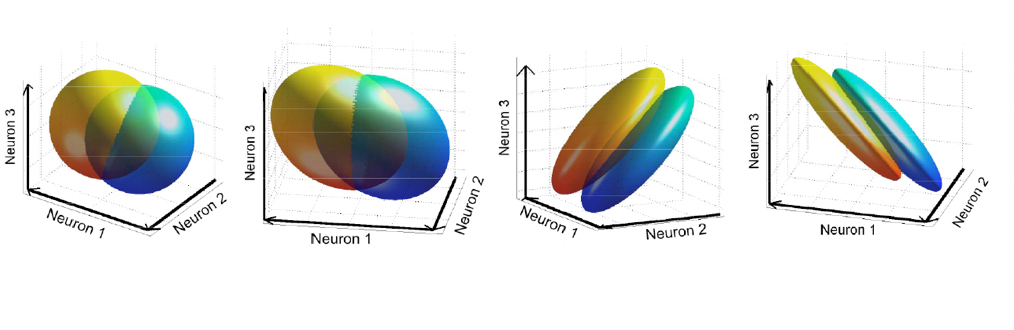 Consistency requirements determine optimal noise correlations (PLoS Computational Biology, 2014)