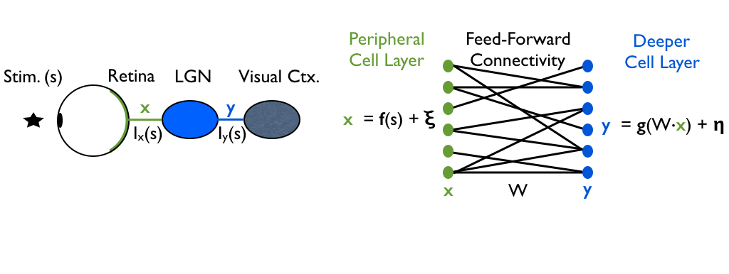 Robust information propagation through multi-layer circuits (PLoS Computational Biology, 2017)